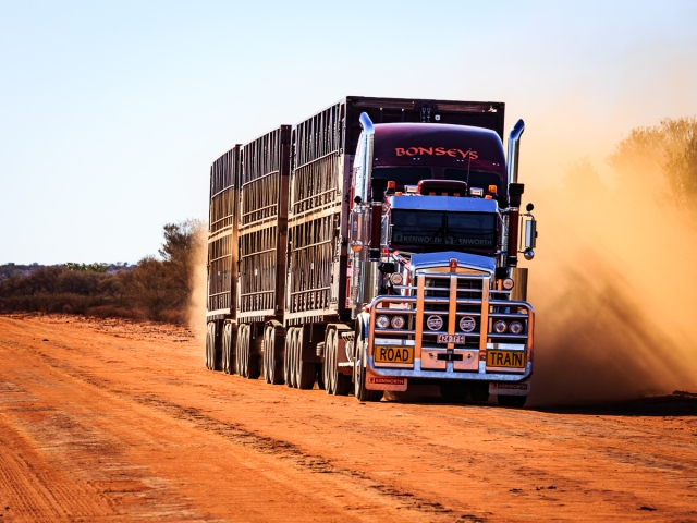 Dusty Road Train_ Dowling Way