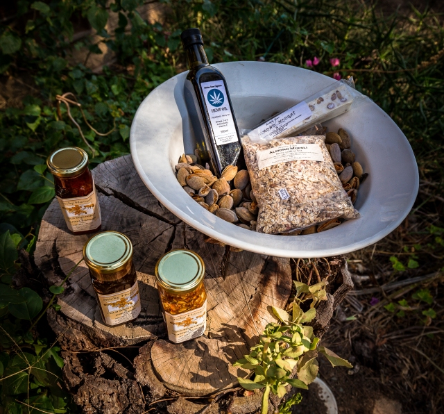 Sun Country on the Murray, Murray River, Sun Country Food Trail, Glenn Marshall, Glenn Marshall Travel Writer, Aintree Almonds and Apiary